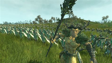 Total War: Warhammer Realm of the Wood Elves review | PC Gamer