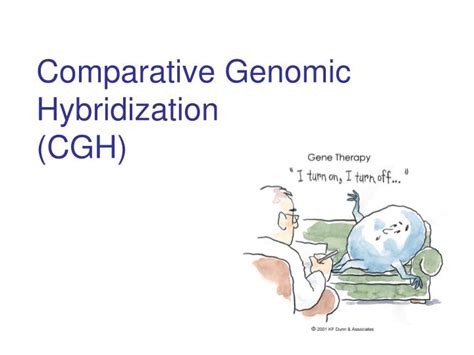 PPT - Comparative Genomic Hybridization (CGH) PowerPoint