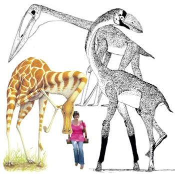Speculative Zoology at Tet Zoo, The Story So Far
