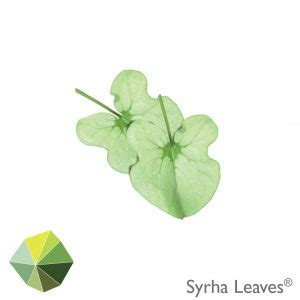 Syrha Leaves® - Français