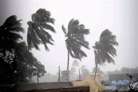 Cyclone Ockhi Live Updates: Death toll in rain-related