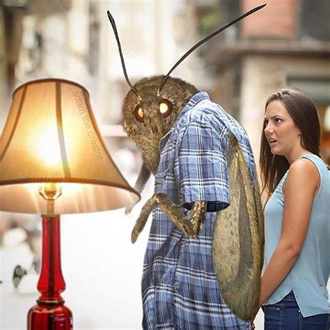 What Is The Moth Lamp Meme? Here's Why You Keep Seeing