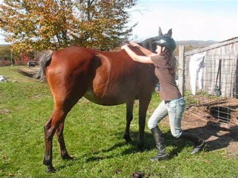 Learn how to Jump/Mount onto your horse from the ground