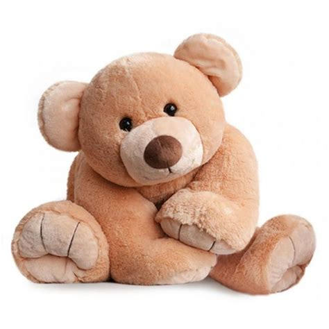 Gros ours miel 90 cm | Histoire d'Ours | MyNoors
