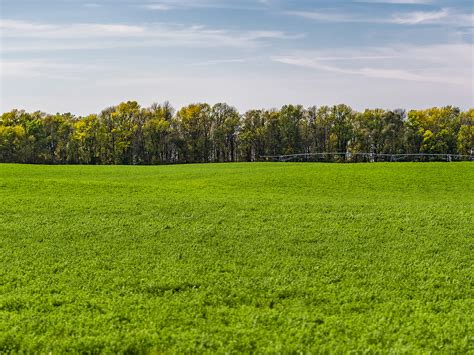 What Could Dampen Farmland Values? | Ag Professional