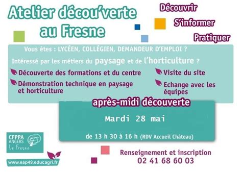 Mission Locale Angevine - Home   Facebook
